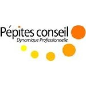 dynamique conseil sponsor coaching ways fr